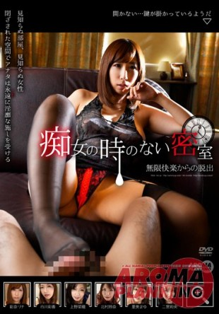 ARM-554 Escape From The Locked Room Infinite Pleasure No Time Slut