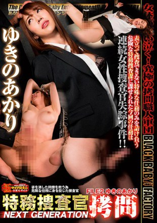 DXTS-002 Secret Military Investigators Torture NEXT GENERATION FILE 2 Akari Yukino