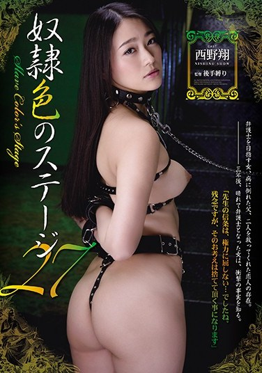 [RBD-678] Slave-Colored Stage 27 Sho Nishino