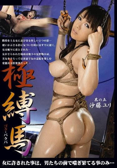 [STM-033] Wild and Tied #5 Yuri Sato