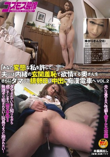 [HAWA-018] Train Molester's Dream – Grope The Girl Then Bring Her Home vol. 2