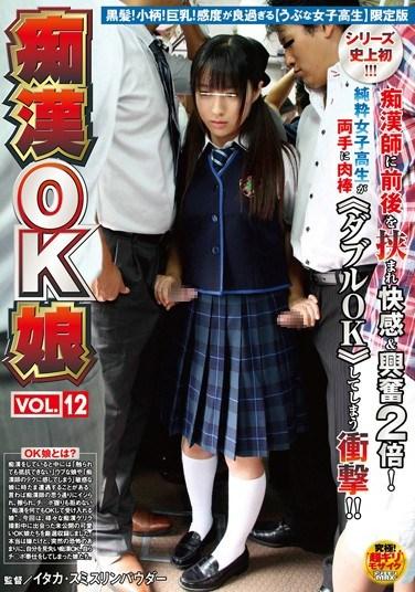 [NHDTA-455] Molestation OK! Girls vol. 12