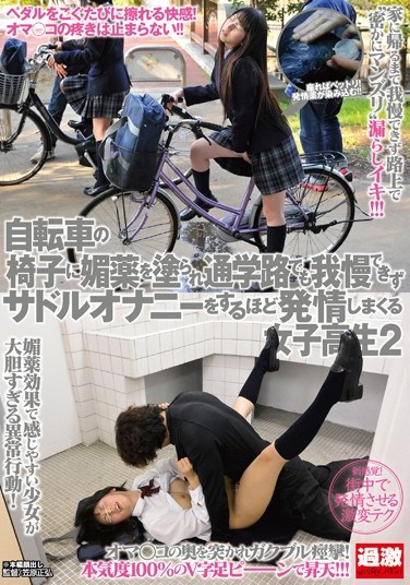 [NHDTA-494] Aphrodisiac on Her Bike Seat: Schoolgirl Can't Hold It In on Crowded Street, Gets Excited to Masturbation 2