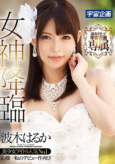 [MDTM-309] The Goddess Descends Haruka Namiki