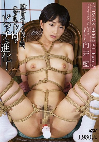 APAE-054 Ai Mukai CLIMAX SPECIAL Part.2 Shortcut Of Desire Daughter, Evolving To Bitch In Increasingly M!