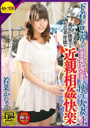 [CEAD-115] Housewife Fucking The Panty Thief 4 Starring Kanae Wakana