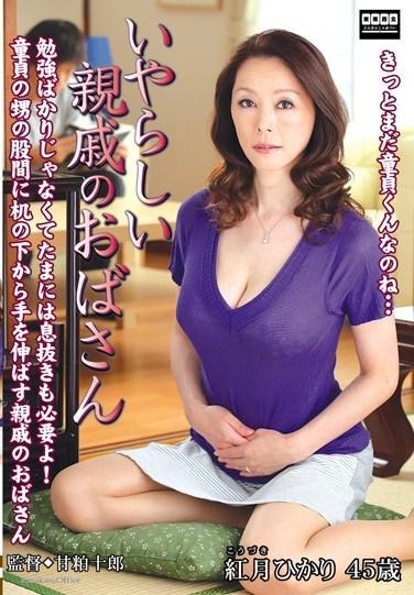 [TNTN-11] My Naught Aunt Hikari Akatsuki