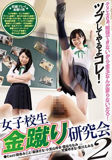 [NFDM-439] Schoolgirl Ball-Kicking Research Council 2