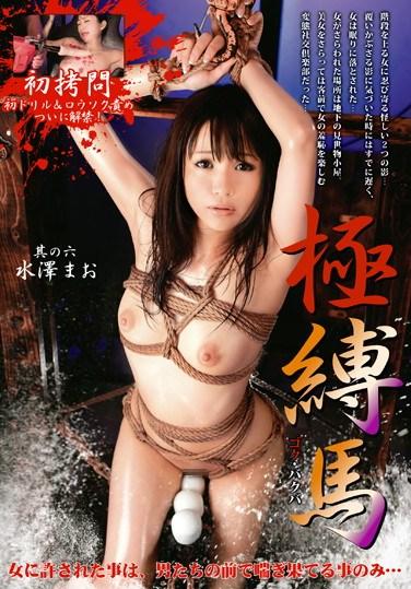 [STM-037] Wild and Tied Part 6 Mao Mizusawa