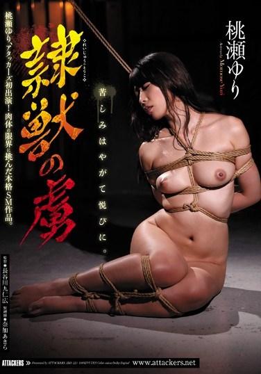 JBD-221 Yuri Momose, The Captive Of The Animal Beast