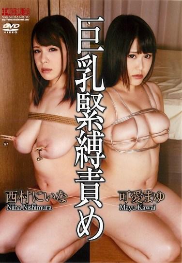 [NBD-071] Big Tits S&M Teasing