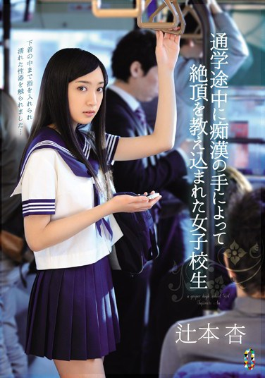 [TEAM-065] A Schoolgirl Is Taught A Lesson in Ecstasy By The Hands Of A Molester While On Her Way To School Starring Ann Tsujimoto
