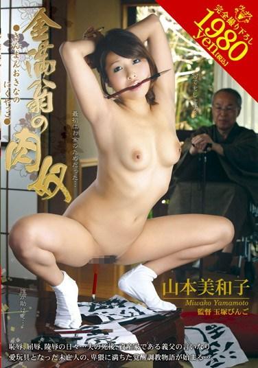 [VEC-039] Rich Old Man's Flesh Slaves Miwako Yamamoto