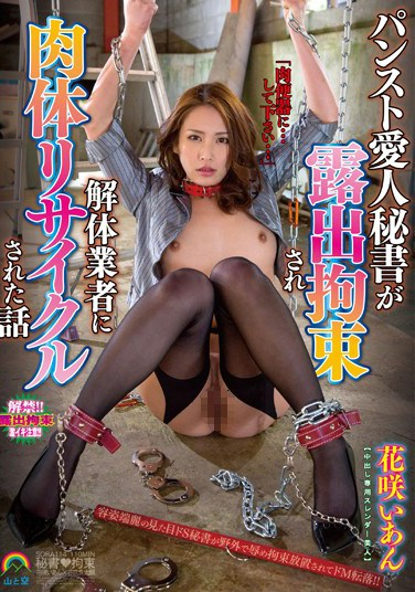 [SORA-114] How A Secretary/Mistress In A Pantyhose Was Exposed, Tied Up And Recycled By A Wrecker. Ian Hanasaki