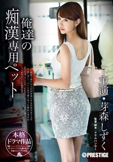 ABP-204 Our Own Molester Pet Shizuku Memori