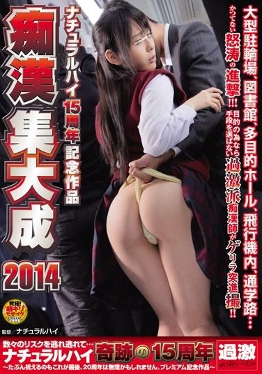 AVOP-006 Natural High 15-year Anniversary Commemorative Molester Compilation 2014