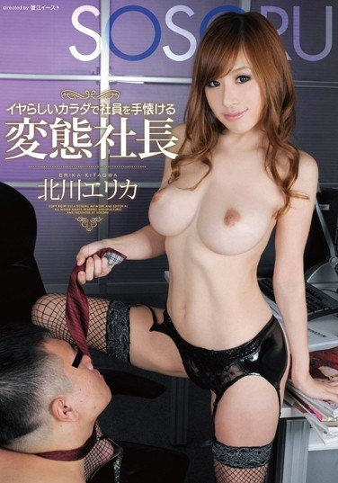 SSR-031 The Kinky Boss Who Tames Her Employees With Her Luscious Body – Erika Kitagawa