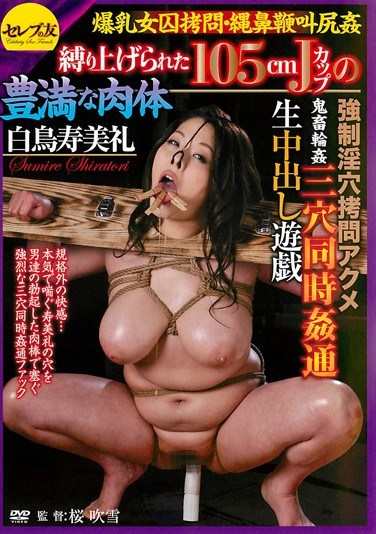 CETD-088 Torture a Girl with Colossal Tits: Tied Up Rape: 150cm J Cup Tits Amazing Body! Perverted Hole Torture & Orgasm! Rough Sex & Gang Bang Triple Penetration Creampie Raw Footage Sumire Shiratori
