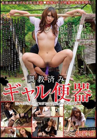SORA-090 Broken In – Gal Toilet Ryo Akanishi