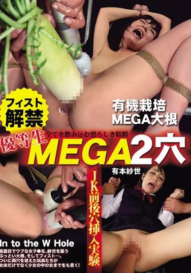 VICD-269 Honor Student Fisting. Those Two Prohibited Mega Holes. Sayo Arimoto
