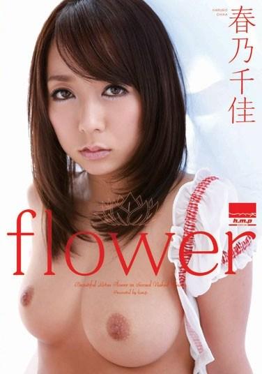 HODV-20870 flower Chika Haruno