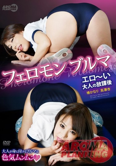 ARM-410 Pheromone Shorts – Naughty Extra-Curricular Class For Adults