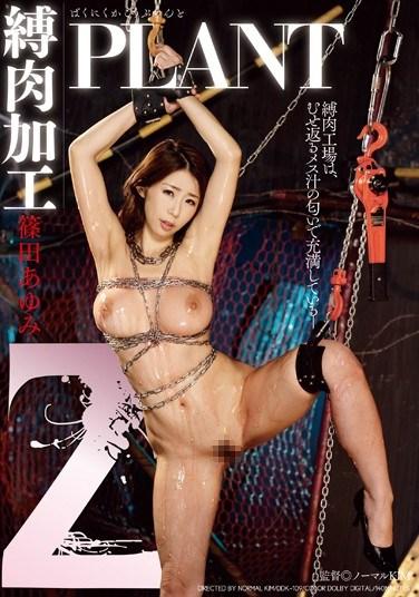 DDK-109 Z Bondage Processing Plant Starring Ayumi Shinoda