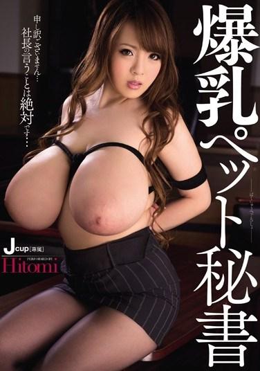 MIDD-989 Colossal Tits, Pet Secretary Hitomi