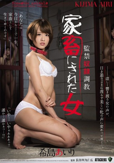 RBD-785 Confinement & Slave Torture The Girl Who Was Turned Into A Pet Airi Kijima