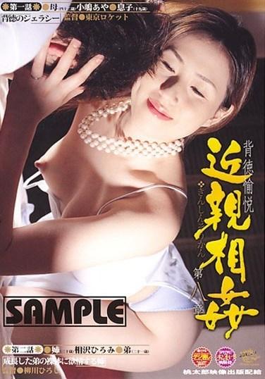 DDKS-34 Immoral Fakecest Pleasure Chapter 8 Aya Kojima Hiromi Aizawa